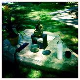 Sangha in the Park