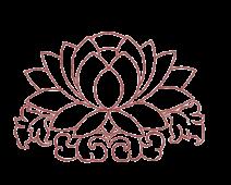 Large lotus flower burgundy